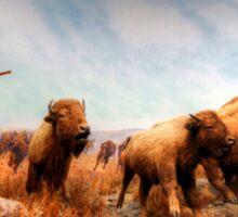 Buffalo Hunt Sticker