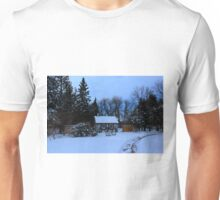 English Gardens (Winter View) Unisex T-Shirt