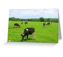 Yummy Pasture Greeting Card
