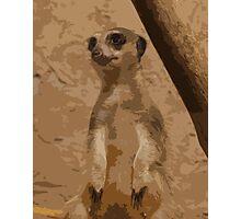 Musing Meerkat Photographic Print