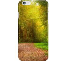 Solitude Path Landscape iPhone Case/Skin