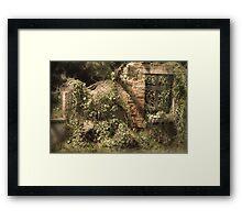 Secret Garden 3 Framed Print