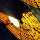 Hot Orange by Merice  Ewart-Marshall - LFA