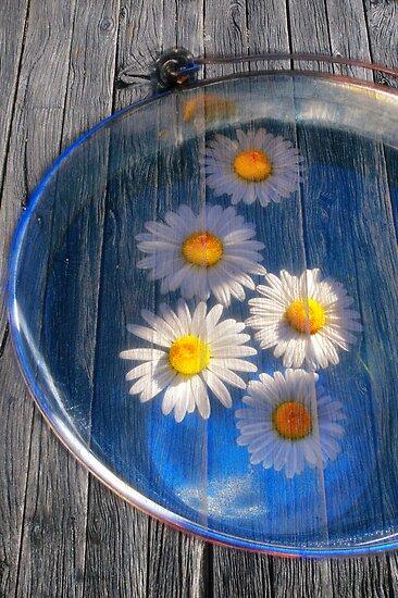 Daisies and water by Veikko  Suikkanen