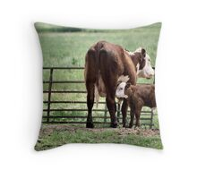 Faucets of Life Throw Pillow