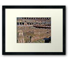 Where Lions Rome Framed Print
