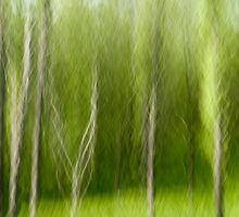 Spring Forest Impression by karenmessick