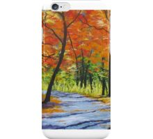 Autumn Path iPhone Case/Skin