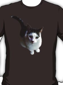 Yin-Yang Kitty II T-Shirt