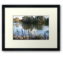 Reclaimed water, Laratinga Wetlands,Mt. Barker, S.A. Framed Print