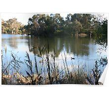 Reclaimed water, Laratinga Wetlands,Mt. Barker, S.A. Poster