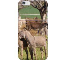 Donkey Rescue iPhone Case/Skin