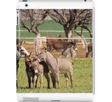 Donkey Rescue iPad Case/Skin