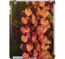 Hot Pink Lupines From My Mother's Garden - Take 2 iPad Case/Skin
