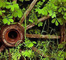Waggon Wheel by Jena Ferguson