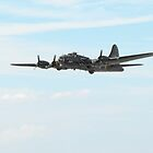 B17 Sally B by larry flewers