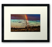 Rainbows-n-old Juniper Framed Print