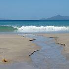 On the Beach; Waipu Cove, Northland, New Zealand by Amaterasu