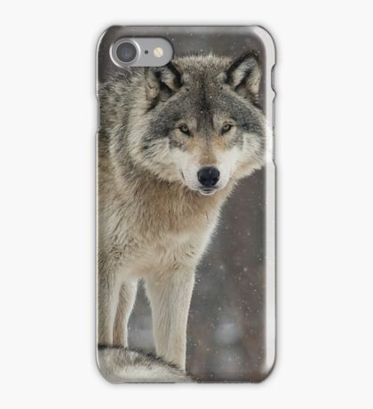 Dominant Wolf iPhone Case/Skin