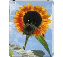 Backlit Sunflower and Bud iPad Case/Skin