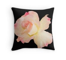 Pink Rose on plain black background Throw Pillow