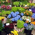 Flower Market by ciaobella2u