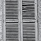 Shutters by Warren. A. Williams