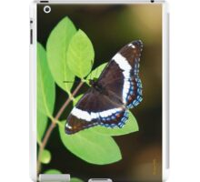 White Admiral Butterfly iPad Case/Skin