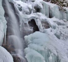 Chameleon Falls Ice Shelf Climb Sticker