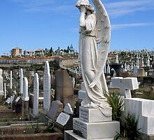 Cemetery Angel by DonovanTM