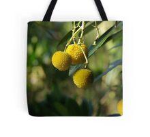 Native Fruit Tote Bag