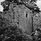 Bellister Castle by DeePhoto