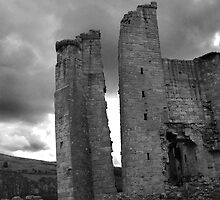Historic Buildings of Northumberland and the Borders by DeePhoto