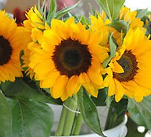 a bunch of sunflowers by frptlady
