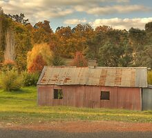 The Old Barn, Balingup, Western Australia by Elaine Teague