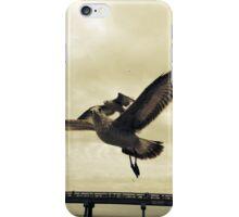 Seagulls At The Beach 2 iPhone Case/Skin