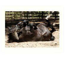 Dark Brown Horse Lying Down Art Print