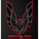Trans Am  by Mikeb10462