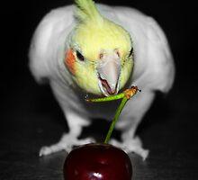 Cherry Delight by TickerGirl