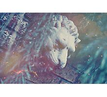 Haunted Lion Photographic Print