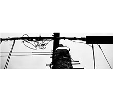 Black on White Wire Photographic Print