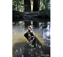 Ghostly Reflection  Photographic Print