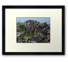 Large Rocks and Seaweed Framed Print