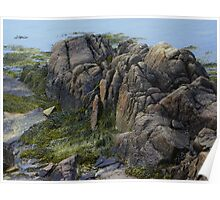 Large Rocks and Seaweed Poster