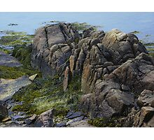 Large Rocks and Seaweed Photographic Print