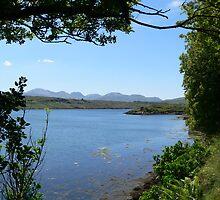 Killary Waters,,,looking towards 12 Pins Mountain Group,,Co.Galway. by Pat Duggan