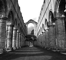 Fountain's Abbey - The Nave by Theresa Elvin