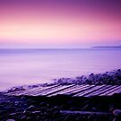 Pebble Ridge at Dusk - Westward Ho!, Devon, England by Craig Joiner
