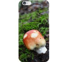 Coming up after the rain iPhone Case/Skin