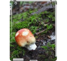 Coming up after the rain iPad Case/Skin